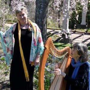 Diane Edgecomb accompanied by Celtic harper Margot Chamberlain – Matinee Performances